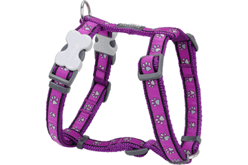 Red Dingo Dog Harness Paw Prints Viola DH-PP-PU