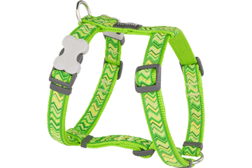Red Dingo Dog Harness Pizzazz Lime Green DH-PZ-LG