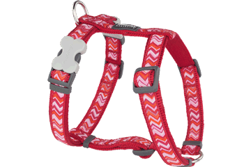 Red Dingo Dog Harness Pizzazz Rosso DH-PZ-RE