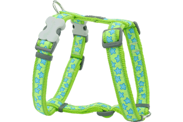 Red Dingo Dog Harness Stars Lime Green DH-ST-LG
