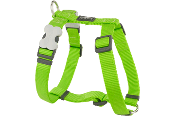 Red Dingo Dog Harness Classic Lime Green DH-ZZ-LG