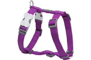 Red Dingo Dog Harness Classic Purple DH-ZZ-PU