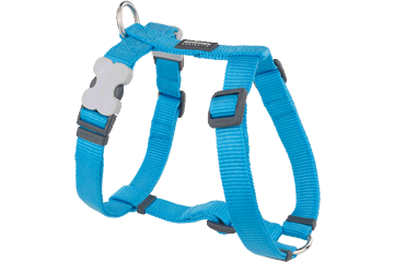 Red Dingo Dog Harness Classic Turquoise DH-ZZ-TQ