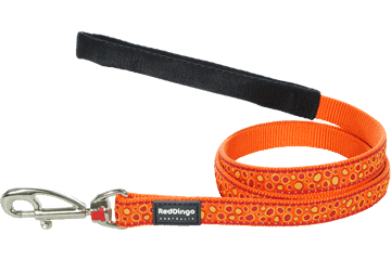 Red Dingo Fixed Length Lead Bedrock Orange L4-BE-OR