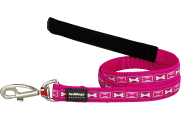 Red Dingo Fixed Length Lead Bone Yard Hot Pink L4-BY-HP