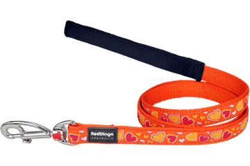 Red Dingo Fixed Length Lead Breezy Love Orange L4-BZ-OR