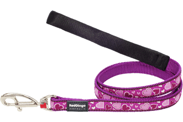 Red Dingo 定长拉带 Breezy Love Purple L4-BZ-PU