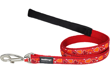 Red Dingo Fixed Length Lead Breezy Love Red L4-BZ-RE