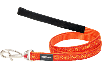 Red Dingo Fixed Length Lead Cosmos Orange L4-CO-OR
