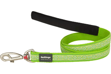 Red Dingo Fixed Length Lead Daisy Chain Lime Green L4-DC-LG