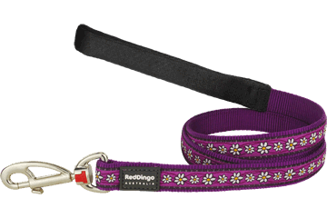 Red Dingo Fixed Length Lead Daisy Chain Purple L4-DC-PU