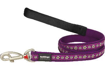 Red Dingo Fixed Length Lead Daisy Chain Purple L4-DC-PU
