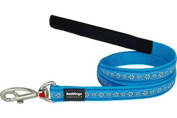 Red Dingo Fixed Length Lead Daisy Chain Turquoise L4-DC-TQ