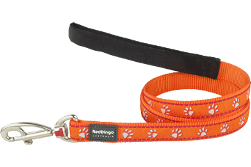 Red Dingo Fixed Length Lead Desert Paws Orange L4-DP-OR
