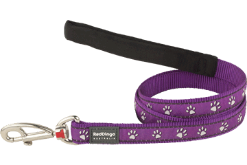 Red Dingo 定长拉带 Desert Paws Purple L4-DP-PU