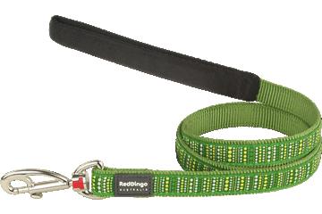 Red Dingo Fixed Length Lead Lotzadotz Green L4-LD-GR