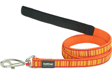 Red Dingo Fixed Length Lead Lotzadotz Orange L4-LD-OR