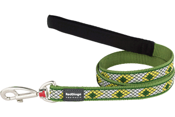 Red Dingo Fixed Length Lead Monty Green L4-MY-GR
