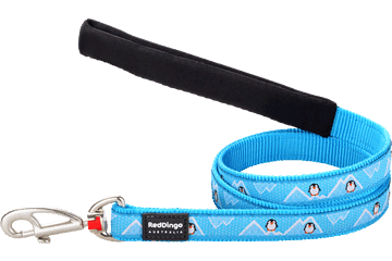 Red Dingo Fixed Length Lead Penguin Turquoise L4-PE-TQ
