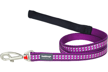 Red Dingo Fixed Length Lead Reflective Bones Purple L4-RB-PU