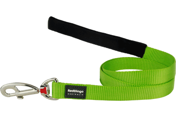 Red Dingo Fixed Length Lead Classic Lime Green L4-ZZ-LG