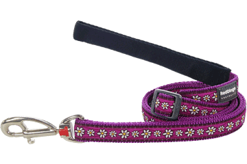 Red Dingo Adjustable Lead Daisy Chain Purple L6-DC-PU (DLS02318 / DLM07218 / DLL12218)