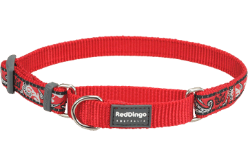 Red Dingo Martingale Collar Bandana Red MC-BA-RE