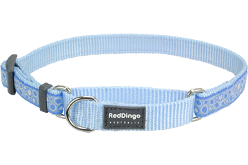 Red Dingo Martingale Collar Bedrock Light Blue MC-BE-LB