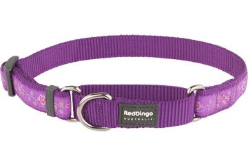 Red Dingo Martingale Collar Butterfly Purple MC-BL-PU