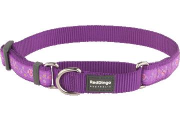 Red Dingo Martingale Collar Butterfly Purple MC-BL-PU