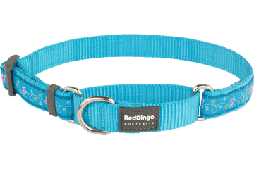 Red Dingo Martingale Collar Butterfly Turquoise MC-BL-TQ
