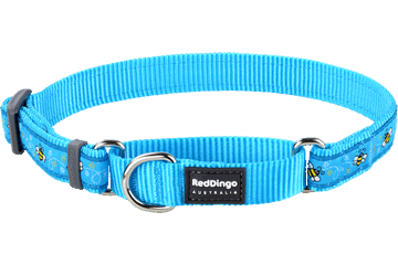 Red Dingo Martingale Collar Bumble Bee Turquoise MC-BM-TQ
