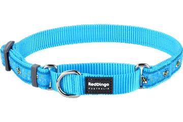 Red Dingo Martingale Collar Bumble Bee Turquoise MC-BM-TQ