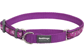 Red Dingo Martingale Collar Bonarama Purple MC-BR-PU