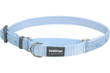 Red Dingo Martingale Collar Breezy Love Light Blue MC-BZ-LB