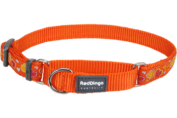 Red Dingo Martingale Collar Breezy Love Orange MC-BZ-OR