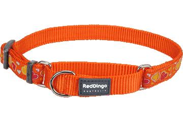 Red Dingo Martingale Collar Breezy Love Orange MC-BZ-OR