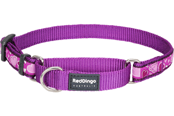 Red Dingo Martingale Collar Breezy Love Purple MC-BZ-PU