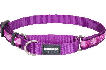 Red Dingo Martingale Collar Breezy Love Purple MC-BZ-PU