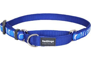Red Dingo Martingale Collar Circadelic Dark Blue MC-CI-DB