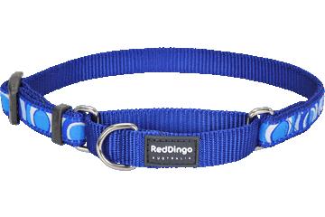 Red Dingo Martingale Collar Circadelic Dark Blue MC-CI-DB