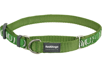 Red Dingo Martingale Collar Circadelic Green MC-CI-GR