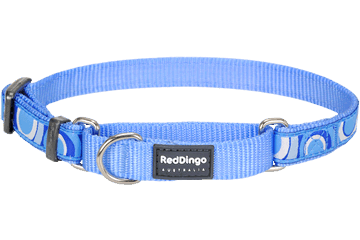 Red Dingo Martingale Collar Circadelic Medium Blue MC-CI-MB