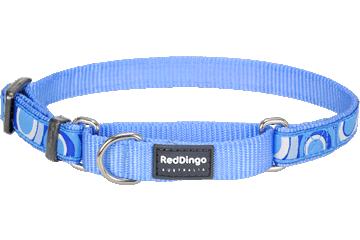 Red Dingo Martingale Collar Circadelic Medium Blue MC-CI-MB