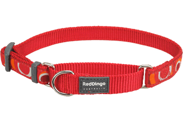 Red Dingo Martingale Collar Circadelic Red MC-CI-RE
