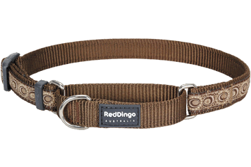 Red Dingo Martingale Halsband Cosmos bruin MC-CO-BR