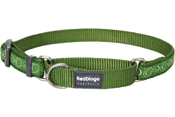 Red Dingo Martingale Collar Cosmos Green MC-CO-GR
