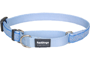 Red Dingo Martingale Halsband Cosmos lichtblauw MC-CO-LB