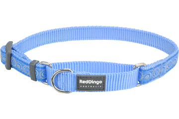 Red Dingo Martingale Collar Cosmos Medium Blue MC-CO-MB