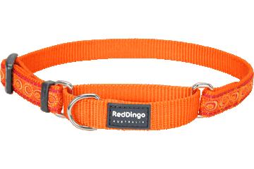 Red Dingo Martingale Collar Cosmos Orange MC-CO-OR